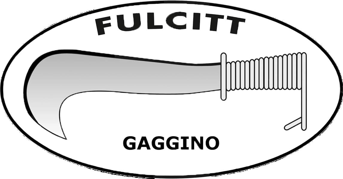Gruppo Fulcitt